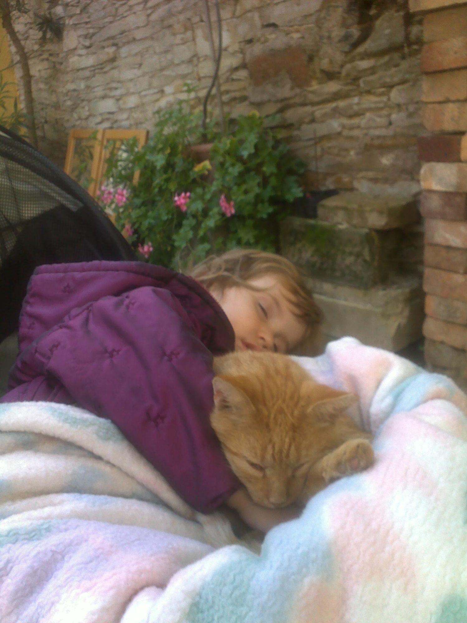Kočku chrání děti před rozvojem astma aalergií
